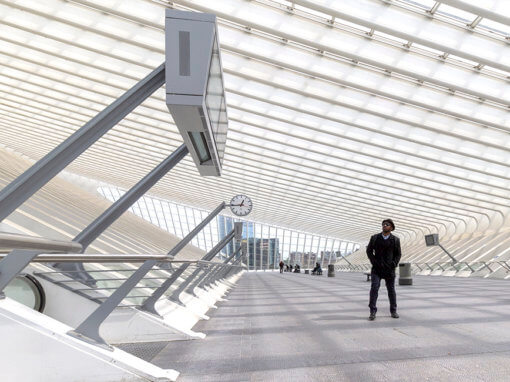 Station Luik Guillemins, architect: Santiago Calatrava.